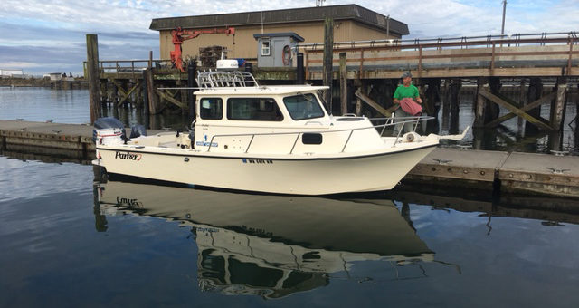Articles page 2 of 4 tackledirect blog for Westport wa fishing report